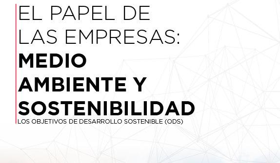 """""""El papel de las empresas: medio ambiente y sostenibilidad"""""""